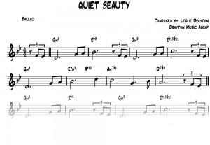 QUIET-BEAUTY-copy